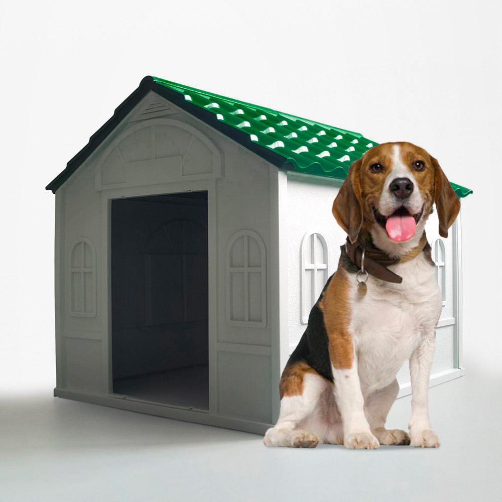 Casetta cuccia per cani di taglia media grande in plastica giardino Dolly